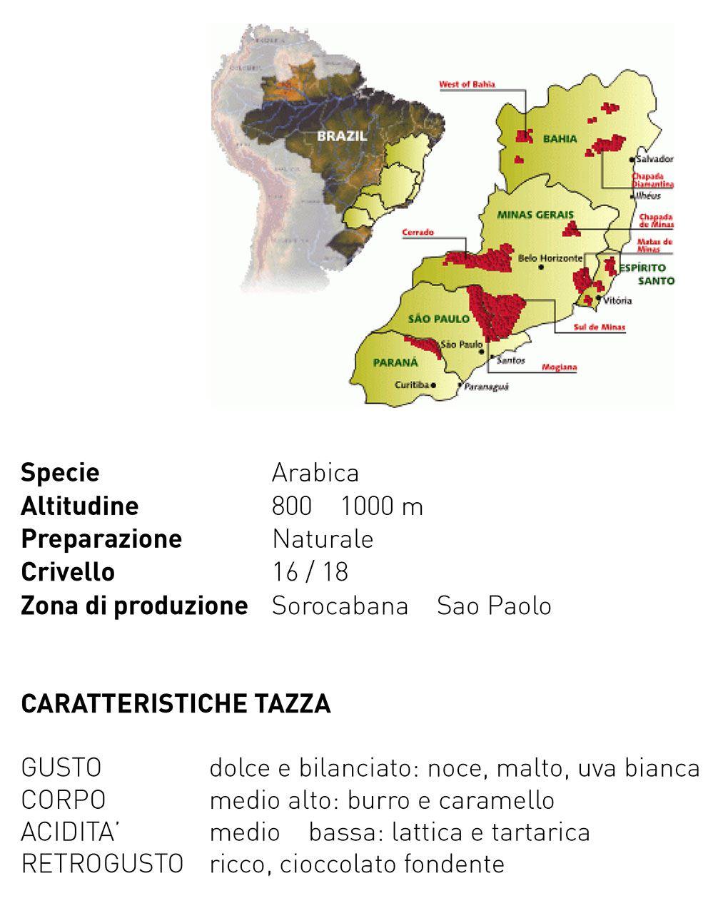 BRASIL-CAPRICORNIO-descrizione