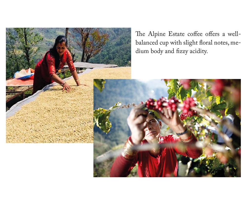 nepal-caffe-zar-cafe